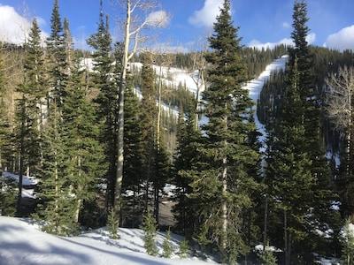 Tushar Mountains, Utah, United States of America