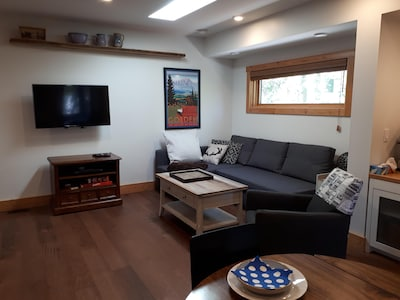 Open plan living room with pull out sofa.