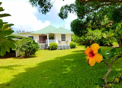 Welcome to Hawi Haven!! We love our front yard!