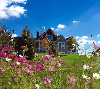 A pretty outside view of our home from the roadside. Summer flowers in bloom!