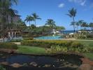 Sunshine, Blue Skies, Palm Trees -- Perfect