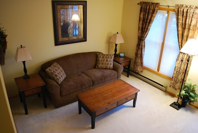 Family room double size sleeper sofa bed.
