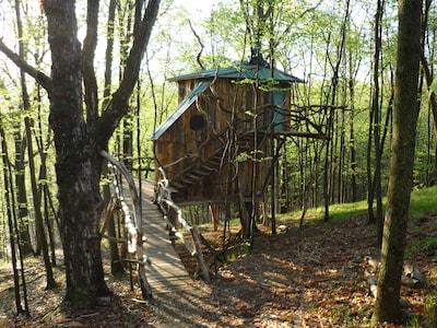 Hermt-Thrush Treehouse