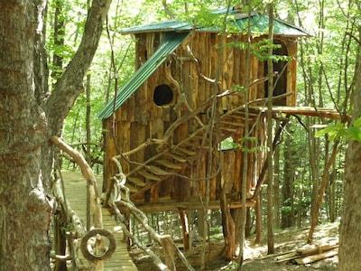 Hermit-Thrush Treehouse