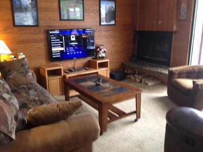 "46"" HDTV & DVD/CD with free Netflix & Pandora.  Free firewood for fireplace!"