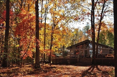House surrounded by fall colors