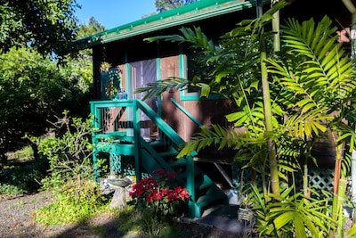 The Koa Cabin