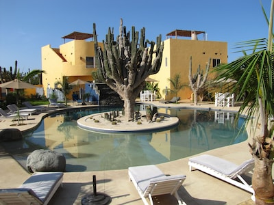 View of our private pool. Shallow end is ideal for the little ones!