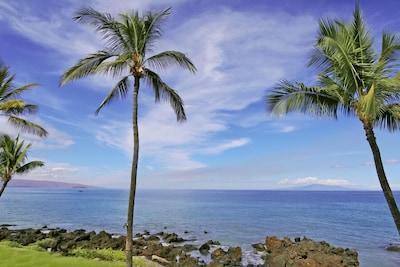 Tedeschi Vineyards, Ulupalakua, Hawaii, United States of America