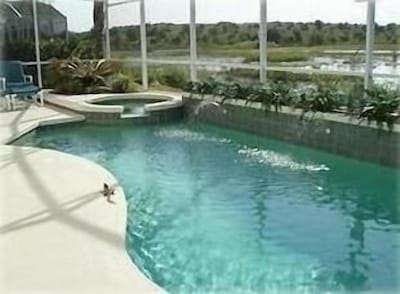 Large private pool/hot tub area looks over wildlife pond/area