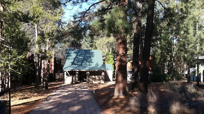 View of cabin from road, shows pine trees and paver driveway.