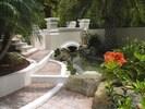 Garden stream with bridge