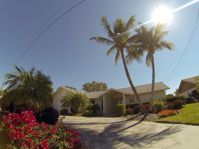Front of the house with spacious driveway, garden and two great coconut palms.