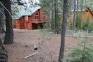 View of Backyard and Back of Our Cabin