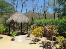 The palapa has a lovely view of the pool and the tropical plants.