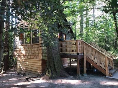 The tiny cabin - enjoy your privacy in this secluded treed setting.