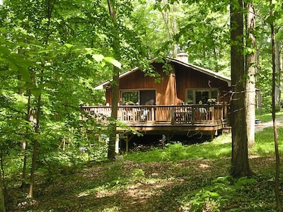 Whitman Woods & House - summer