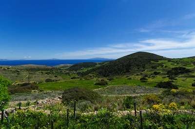 One brilliant view from the patio, across the orchards to the sea and Cyclades.
