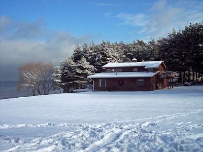 Winter Beauty!