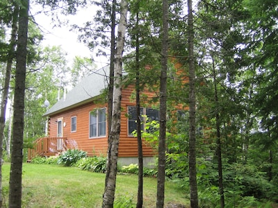 Birch Overlook Cabin - sited in the woods overlooking beautiful Prong Pond