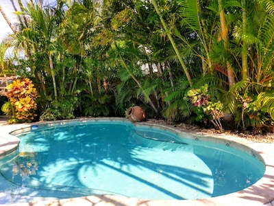 11/2018 - lush tropical setting in secluded private pool.