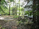 Cabin side yard has picnic table and hammock