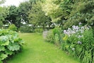 The garden in summer time.