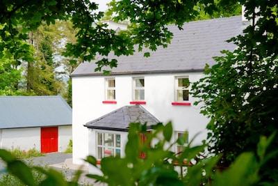 Great Limerick Holiday Destination