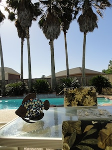 Huge Palm Trees by the Pool.