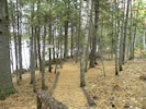 Prong Mountain Cabin - A short walk thru the woods brings you to the waterfront.