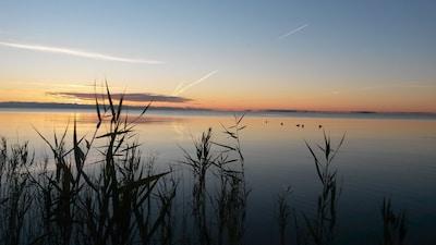 perfect sun rises and sun sets