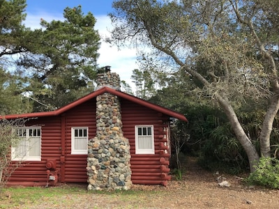 antique cabin from the Hearst era