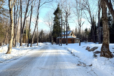 Private setting in the woods offers direct ATV,Bike and Snowmobile trail access.