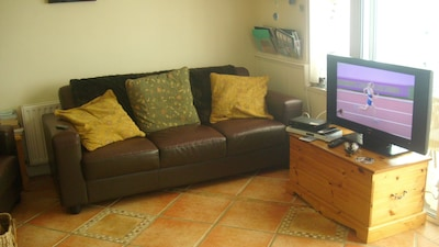 Living area with large TV and DVD