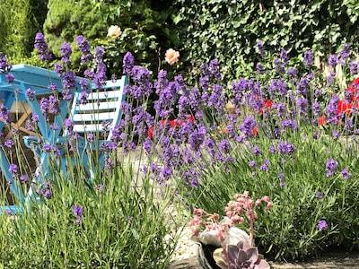 The pretty fragrant garden at Little Sea Sparkle