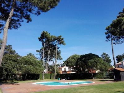 Cadima, Cantanhede, Bezirk Coimbra, Portugal