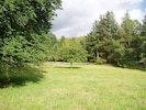 The meadow in front of the cottage