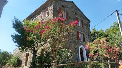 Giocatojo, Haute-Corse, Frankrijk