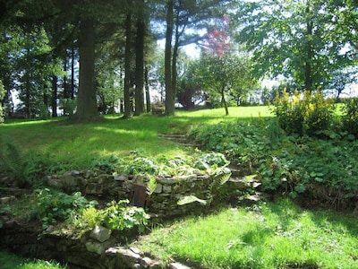 Part of the half acre garden