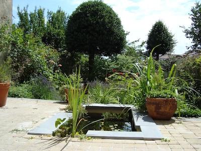 Jardin en été. Vue depuis le living