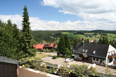 Valley view (summer)
