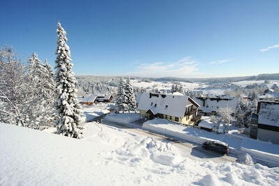 Valley view (winter)