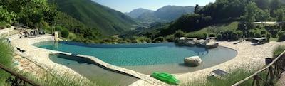 The swimming pool panoramic view