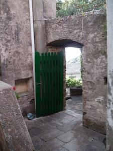 le patio vu de la porte de la cuisine, en face porte terrasse principale