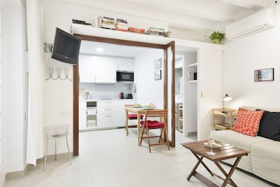 Brand-new reformed apartment (January 2017)