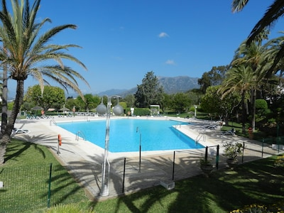 The main pool, bigger than Olympic size, and you will often have it to yourself!