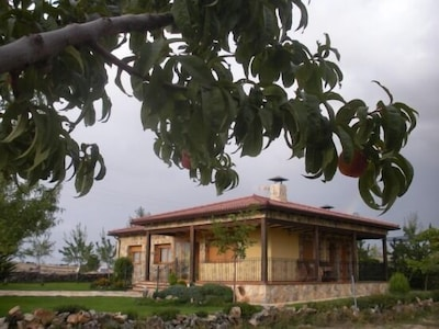 Alaminos, Castilla - La Mancha, Spagna