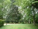 Jardín, parque