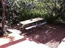 table sous le cerisier