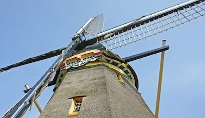 A true Windmill!!! anno 1874